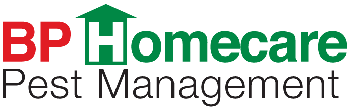 BP Homecare